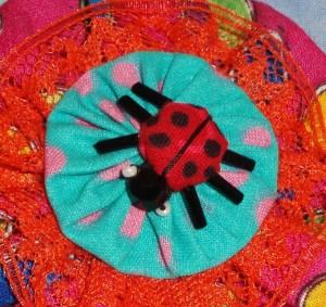 ladybug yo yo closeup