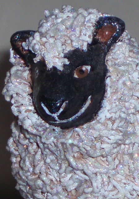 closeup of sheep's face