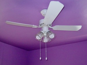 ceiling fan painted in place