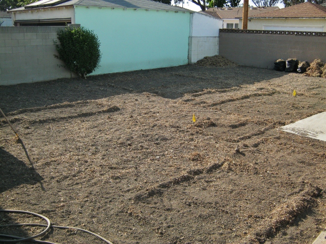 backyard with grass removed
