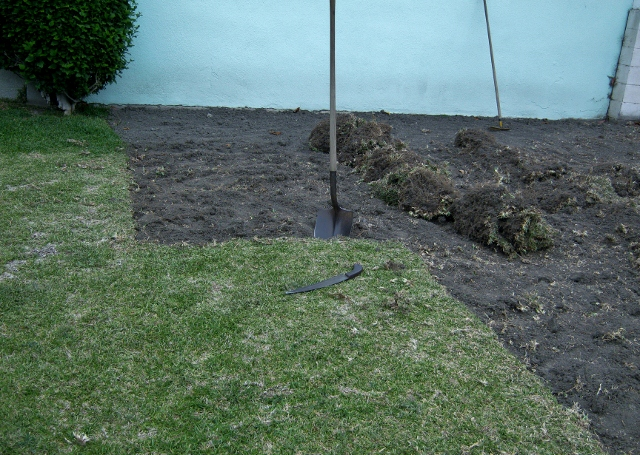 dig out grass in rows
