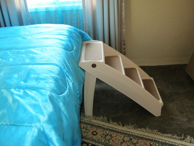 dog stairs next to bed