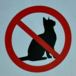 No cats allowed by Bex Walton, on Flickr