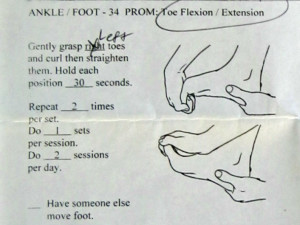 toe flexion